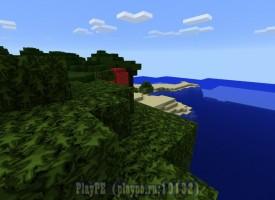 Сервер выживания PlayPE