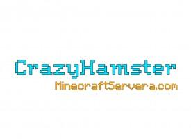 Сервер CrazyHamster