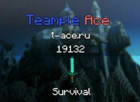 Обзор сервера TeampleAce